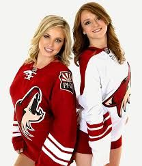 The NHL Lockout that began on September 2012 is over. A deal on a new collective bargaining agreement was agreed upon on Janua. Hockey Sweater, Phoenix Coyotes, Women's Hockey, Ice Girls, Postnatal Workout, Soccer Fans, Sport Body, National Hockey League, Video Games For Kids