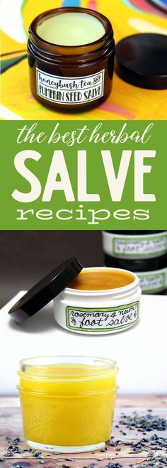 Best Herbal Salve Recipes for Every Ailment! Crafted from plant based ingredients that include a combination carrier or herbal infused oils and beeswax that promote skin health, this collection of 24 of the best herbal salve recipes are suited for almost every ailment. Plus a simple all purpose salve recipe to customize yourself. via @soapdeligirl