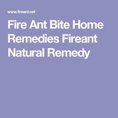 Fire Ant Bite Home Remedies Fireant Natural Remedy