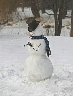 Madisons Headless Snowman As Big As >> 600 Best Snowman Humor Images In 2019 Snowman Xmas Winter Snow