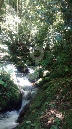 Rural à venda com 2 Quartos, Centro, Ibiúna - R$ 120.000, 30000 m2 - ID: 2922395673 - Imovelweb