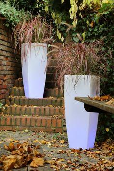 Poliethylene modern flowers pot TerraForm - how to decorate garden in winter?