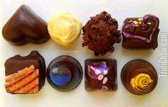 Cocobel Chocolate