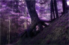 Neu in meiner Galerie bei OhMyPrints: Im Zauberwald