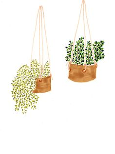 great idea! have pictures of plants instead of real plants. perfect for a black thumb like me! :: Lucy Auge