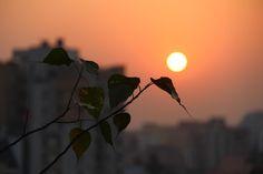 Open my world. #Calcurated #Kolkata Photography: Mallika Singhee