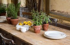 Simple & classic: breakfast mugs & oval plates from our honest range of traditionally made Royal Staffordshire Pottery