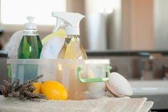 limpador de vidros natural e ecologico