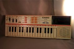 oh yes, the old school Casio electric keyboard with pre-programmed tunes...I annoyed my sister plenty of times with my amazing musical skills!