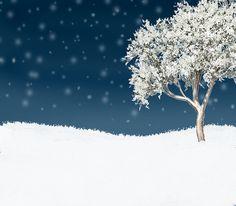 christmas background scene