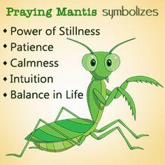 Praying mantis symbolism