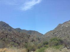 Desert view. #sandraespinet #cabo #travel