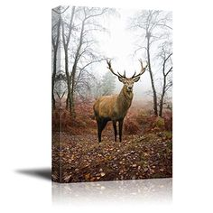 Canvas Prints Wall Art  Beautiful Red DeerStag in Foggy Misty Forest Landscape in AutumnFall  Modern Wall Decor Home Decor Stretched Gallery Wraps Giclee Print  24 x 36 -- Check this awesome product by going to the link at the image.Note:It is affiliate link to Amazon. #adorable