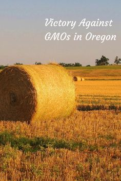 Farming safe haven against GMOs protected in Oregon. This is a big step forward for farms everywhere.