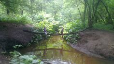 In the woods, landgoed de Utrecht Nordic Walking, Utrecht, Beautiful