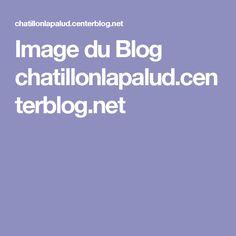 Image du Blog chatillonlapalud.centerblog.net