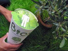 Urna Bios, baú biodegradável criado pelo designer Martín Azúa