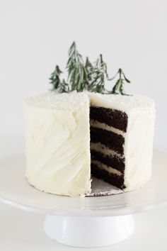 Can you believe this cake?? Seen on How to: Decorate a Winter Cake