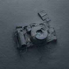 Photographer - Peter Lippmann