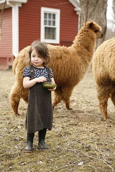 Hanging out with the alpacas on the farm.....