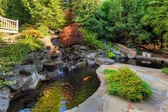 Koi pond and water slide