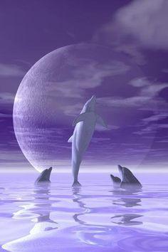 FLORIDA PALMS OCEAN DOLPHINS SUNSET SINGLE LIGHT SWITCH WALL PLATE FL ROOM DECOR