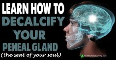 The primary goal of decalcifying your pineal gland is so that you can begin the process of pineal gland activation and begin the awakening of your third eye. There are two parts topineal gland decalcification....