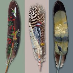 feathers | Busy Lizzy's Easle: BEAUTIFUL PAINTED FEATHERS