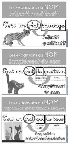 Des affiches pour les expansions du nom (adjectif qualificatif, complément du nom, proposition subordonnée relative) How To Speak French, Learn French, Cycle 3, French Worksheets, French Grammar, French Class, Teaching French, French Language, Story Time