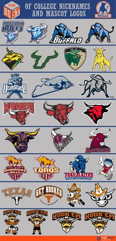 The Best of College Nicknames and Mascots logos College Football Logos, Funny Football Memes, Sports Team Logos, College Sport, Sports Decals, Sports Art, Basketball Posters, Spray Paint Art, Logo Sign