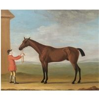 "Mr Jenison Shaftos Bay Racehorse ""Goldfinder"" by Francis Sartorius the Elder"