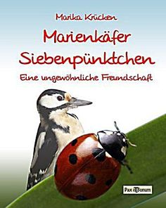 Marienkäfer Siebenpünktchen - Ein kleiner Käfer auf der Suche nach einem Freund.