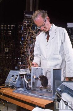 "Behavioural psychologist B.F. Skinner working with a rat in a ""Skinner box"", by Nina Leen, 1960"