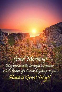 Good morning... Bon matin!