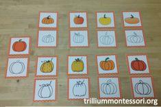 Pumpkin Theme Outline Matching Cards