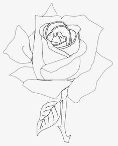 Rose Sketch, Rose Tattoos, Drawings, Flowers, Sketching, Image, Art, Sketch, Kunst