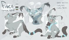 FinchWing reference
