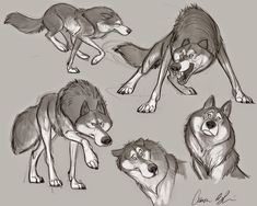 Character modeling, character design references, art drawings, drawings o. Wolf Character, Character Design Cartoon, Character Design Tutorial, Character Design Animation, Character Design References, Character Drawing, Character Modeling, Animal Sketches, Animal Drawings