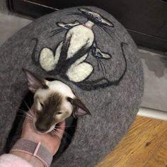 """Ivana Šťastná na Instagramu: """"Siamský pelíšek pro malou ušatou siamku#pelíšek #catcave#katzenhöhle #orientalcat #домикдлякошки #мокроеваляние #cathouse #siamesecat…"""""""
