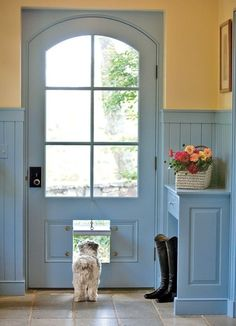 blue door, cute doggie,  by DaisieeePearl