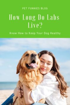 Who Knows How Long Do Labs Live Do You Want Your Dog To Live