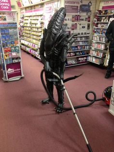 Just another day at the video store