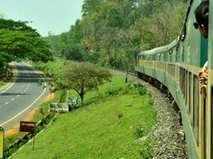 Assam Beauty : Goalpara