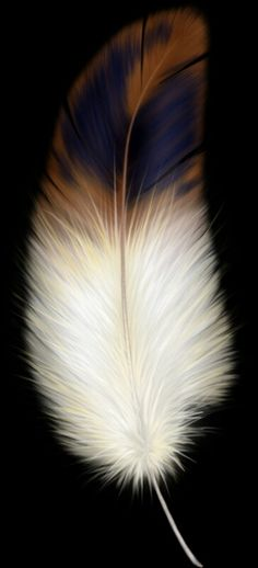nature is a great artist Feather Drawing, Feather Painting, Feather Art, Bird Feathers, Watercolor Feather, Feather Tattoos, Pastel, Feather Dream Catcher, Natural