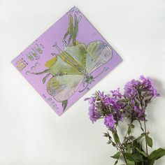 Lime green butterfly on mauve background  blank greeting card