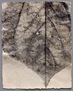 Susan Abrams, Veins #1 Basée à Philadelphie, cette photographe autodidacte fabrique son propre papier afin de conférer une texture particulière à ses tirages. Elle est toujours à la recherche d'un détail suggérant l'harmonie et l'équilibre au milieu d'un univers chaotique.