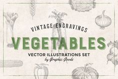75 Vegetables - Vintage Engravings by Graphic Goods on @creativemarket
