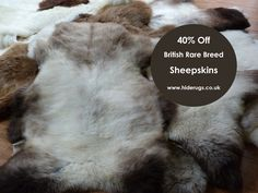 40% Off Rare Breed Sheepskin Rugs