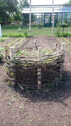 2017-06-17 11.24.29 capellagården flätad kompost