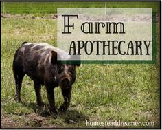 When it comes to the care of farm animals, it used to be a rare thing to call a vet! HomeandFarmSense.com shares with us the way to use Farm Apothecary instead.